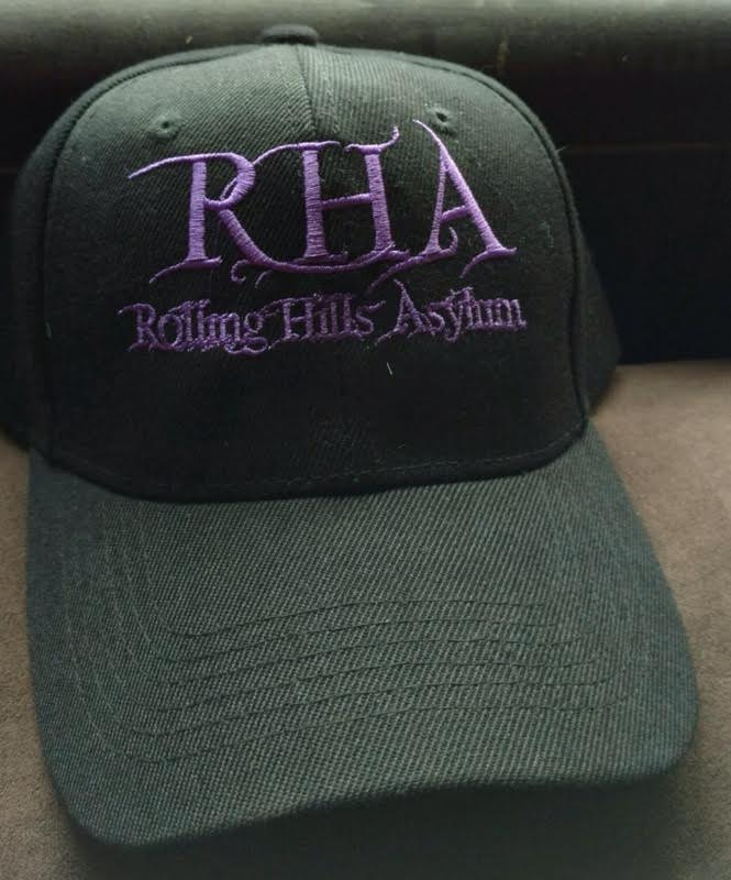 Baseball Hat (Black with Purple Embroidery)